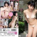 LCDV 40533 120x120 - [LCDV-40533] 堀川美加子 Mikako Horikawa