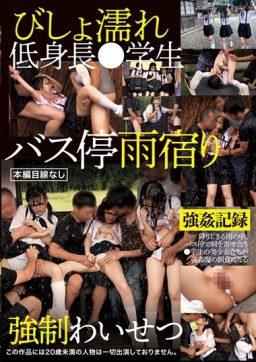 IBW 810 256x362 - [IBW-810] びしょ濡れ低身長●学生バス停雨宿り強●わいせつ 微乳 Mini ミニ系 ロリ系 Tits