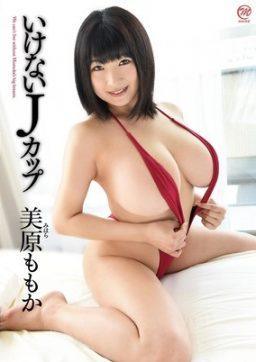 MMR 432 256x362 - [MMR-432] 美原ももか Momoka Uehara
